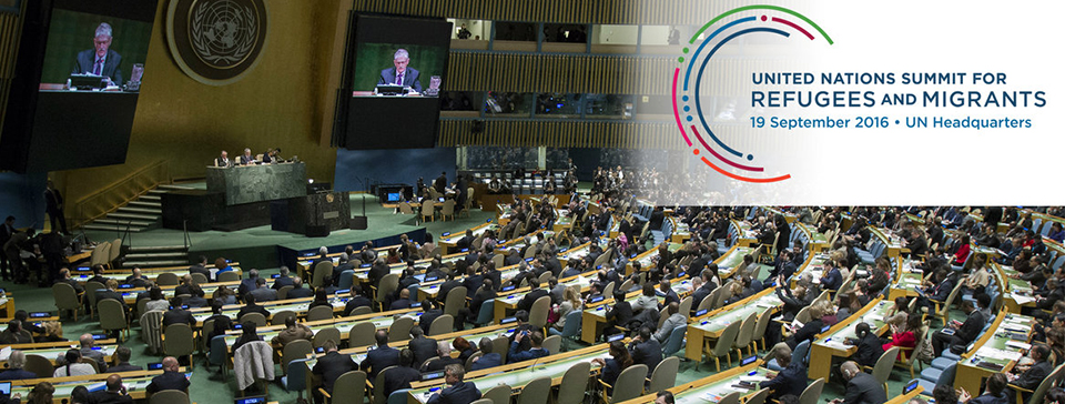IFFD in the UN General Assembly